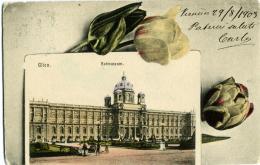 AUSTRIA  WIEN  Hofmuseum  1903 - Museen
