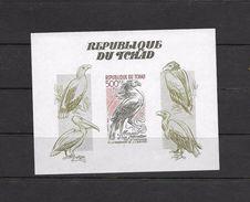 O) 1985 CHAD,  SOUVENIR IMPERFORATE,  BIRDS OF PREY, ANNIVERSARY OF THE BIRTH OF JOHN J. AUDUBON, MNH - Chad (1960-...)