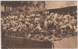 Belgium - Gand - Gent - Gentsche Floralien 1933 - Gent