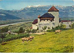 Liechtenstein - Château De Vaduz - Vallée Du Rhin - Quick Tourist Office - Ecrite, Timbrée - 1860 - Liechtenstein