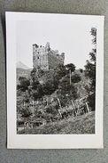 Foto Montagna 1950 Valle D'Aosta Torretta Castello Con Vigneti - Photographs