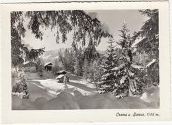 Crans S. Sierre, 1500 M. - Pas De L'Ours - (Valais, Suisse/Schweiz) - VS Valais