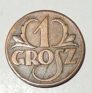 1 MONETA - POLONIA - 1 GROSZ - 1923 - (23) - Polonia