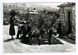 19693 CPM  Scènes Corses Au Village D' OLIVESE ! , Jolie   Carte Photo   ACHAT DIRECT - France