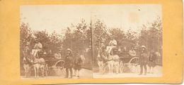 Stereofoto, (Openbaar) Vervoer Met Ezels/Old Transport By Donkey's - Stereoscoop