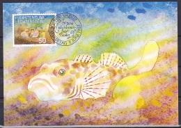 Liechtenstein (1987):- Fish 1st Series/Cottus Gobio (50 Rp):- MAXI CARD - Maximumkarten (MC)
