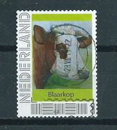 Netherlands Blaarkop,cow,animalsl,personal Stamp Used/gebruikt/oblitere - Niederlande