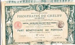 ALGERIE - PHOSPHATES Du CHELIFF - PART BENEFICIAIRE De 500 Francs Au Porteur 1892 - TRES BEAU GRAPHISLME - RARE - - Industry