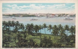 Florida Birds Eye View From Royal Poinciana Showing Lake Worth a