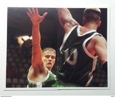 Slovenia Basketball Cards  Stickers Nr. 42-43 Radoslav Nesterovic Marko Tusek  EUROBasket 2001 Turkey - Stickers