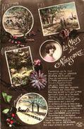 Langage Des Mois De Naissance Et Saisons - Printemps, été, Automne, Hiver (EKP 1423) - Femmes