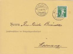 1913 Geburtsanzeige Viehzuchtgenossenschaft Gelaufen Von Muhlrüti Nach Mosnang. Mi:113xIII Tellknabe - Suisse