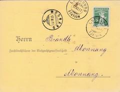 1911 Geburtsanzeige Viehzuchtgenossenschaft Gelaufen Von Lütisburg Nach Monsang Mi:113 III TellKnabe - Suisse