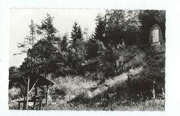 Gembes (Haut-Fays) - N° 854 Monument Du Maquis - Circulé - SMETZ - Edit Maison Baonville Mag. Delhaize  à Gembes - Daverdisse