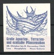 Reklamemarke Linz, Grosse Aquarien-und Pflanzenschau 1949, Zierfische - Erinnofilia