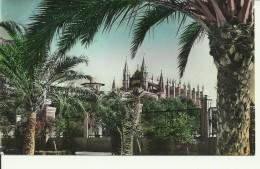 Mallorca - Palma - Catedral Desde Paseo De Sagrera - 2 Scans - Palma De Mallorca