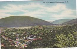 New York Salamanca BIrds Eye View