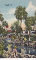 Florida Tampa View In Plant Park Curteich