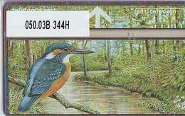 Telefoonkaart OISEAU Martin-pêcheur * LANDIS&GYR * NEDERLAND * R-050.03B * 344H * NL  Prive Private * ONGEBRUIKT * MINT - Pays-Bas