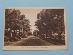 Um Trecho Da Estrada Lobito - Catumbela () Anno 19?? ( Zie/voir Foto Voor Details ) ! - Angola