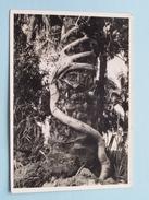 KASAI ( N° 18 ) L'ETRANGLEUR () Anno 1955 ( Zie/voir Foto Voor Details ) ! - Congo Belge - Autres