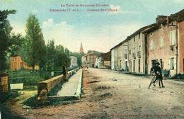 CAUSSADE - AVenue De Cahors Jeune Cycliste - Caussade