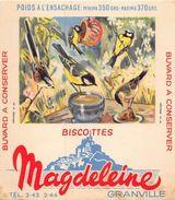6 Buvards Biscottes MAGDELEINE OISEAUX (Mésanges-Canards Col Vert- Merle Noir-Traquet Pâtre- Martin Pêcheur-Chouette) - Animaux