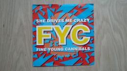 Fine Young Cannibals - She Drives Me Crazy - Vinyl-Single - Disco, Pop