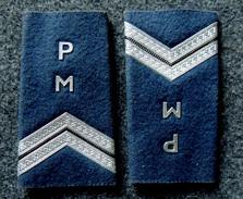 Ancienne Paire De Fourreaux D'épaulettes : POLICE MUNICIPALE Gardien De La Paix - Police