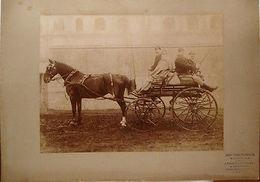 Foto Epoca Militari Cavalleria In Carrozza Napoli 1875 - Fotografia