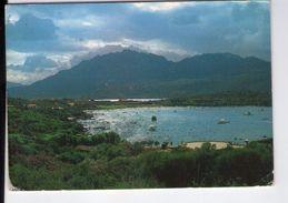 U940 Cartolina Della Sardegna : Olbia (Sassari) - Porto Rotondo - La Spiaggia Ira + Lunga Lettera In Tedesco 1987 - Italie