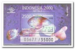 Indonesië 1998, Postfris MNH, International Stamp Exhibition Indonesia 2000 - Indonesië