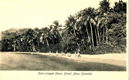 AJ 168 -  C P A -   ANTILLE   GRENADA -  PALM-FRINGED SHORE GRAND ANCE GRENADA - Grenada