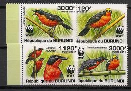 Burundi - 2011 - N°1253 à 1256 - Gonolek / WWF - Neuf Luxe ** / MNH / Postfrisch - Cote 18€ - Birds