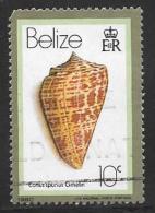 Belize, Scott # 476 Postally Used Seashell, 1980, Round Corner - Belize (1973-...)