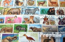 Afrika 100 Verschiedene Afrikanische Tiere Briefmarken - Postzegels