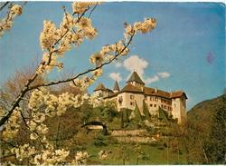 CPSM  Vevey-Château De Blonay    L 2467 - VD Vaud