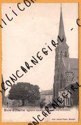 Bois D'Haine - Eglise Et Marronnier - Trois Fois Séculaire - Animée - ALLARD TISON - 1902 - Manage