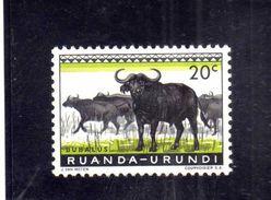 RUANDA URUNDI 1959 1961 FAUNA CAPE BUFFALOES ANIMAL ANIMALE BUFALO DEL CAPO CENT. 20c MH - Ruanda