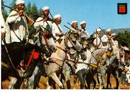 MAROC---marruecos Tipico--cavalerie Typique--voir 2 Scans - Maroc