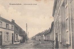 Wommelgem - Wommelghem - Antwerpsche Straat - Wommelgem
