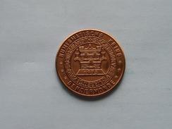 DENDERMONDE - Numismatische Kring - 1981 ( Bronskleur - Details, Zie Foto ) - Tokens Of Communes