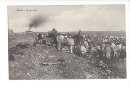 18357 - Libye Somalie Derna La Spiaggia - Libya