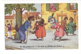 18364 - Chats Habillés Humanisés Je Me Présente Je Suis Le SHAH De Perse - Animaux Habillés