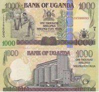 Ugavda P-43b 1000 Shillings 2008  UNC - Uganda