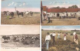 Lot 12 Cpa En Beauce Thème Agriculture Moissons Moulins Berger Labourage Semeurs Hersage Intérieur De Ferme Rare A Voir - Other