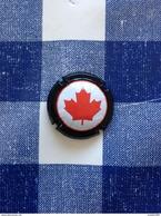 °CAPSULE CAPS Biere Beer Bier Birra Cerveza Piwo Pilsen : Rince Cochon IPA Canadian Craft Beer - Bière