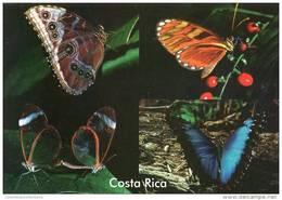 Lote PEP841, Costa Rica, Postal, Postcard, Fauna, Mariposas, Buterfly - Costa Rica