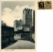 CONEGLIANO VENETO  TREVISO  Castello  Fb Propaganda Di Guerra 30c - Treviso