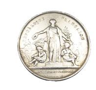 Médaille De Table -  Agriculture De L'Yonne - Argent - 20,96 Gr. -  TB+ - - Royal / Of Nobility
